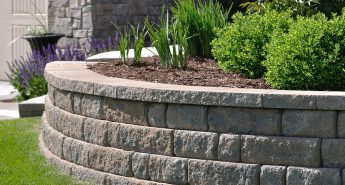 Low Maintenance Landscaping Adelaide